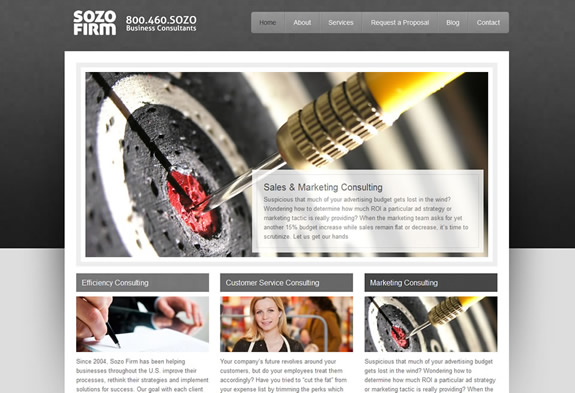 Business consultant website design by sozo creative for Web design consultant